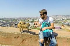Como-dar-la-vuelta-al-mundo-templo-monos